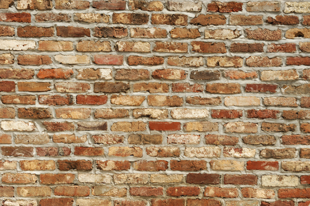 no body: background of brick wall texture
