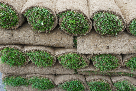 sod: close up on stacking turf sod carpet