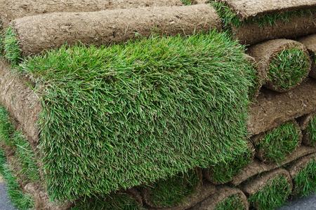 close up on stacking turf sod carpet 免版税图像 - 62589843