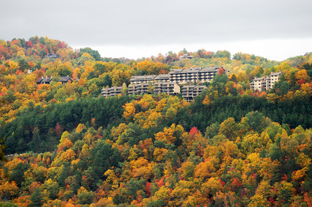 autumn mountain forest with hotel buildings on top Фото со стока