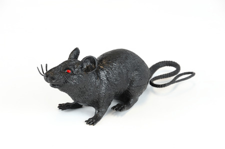 Halloween plastic black rat isolated on white background Reklamní fotografie - 65003796