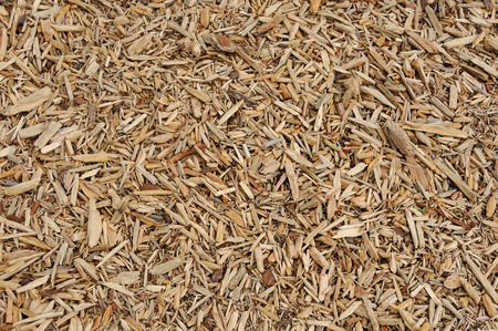 bark mulch: mulch background Stock Photo
