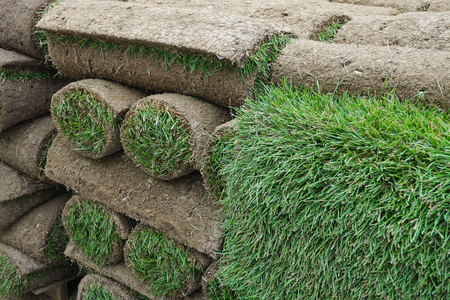 close up on stacking turf sod carpet roll Imagens