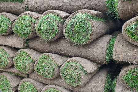 turf pile: close up on stacking turf sod carpet roll Stock Photo