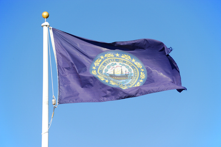New Hampshire state flag waving under blue sky Stock Photo