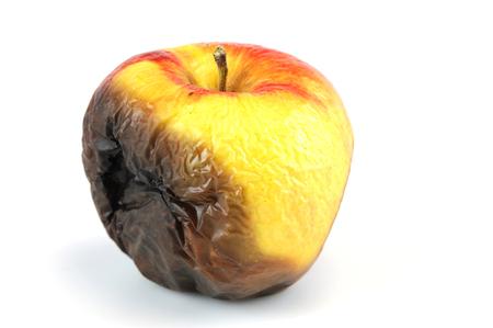 白い背景に分離された腐ったリンゴ