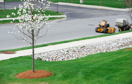 lawn care in residential community in spring