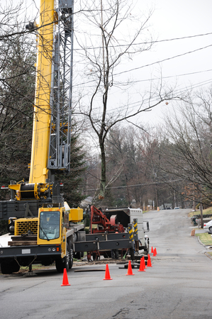 tree removal service: equipment and workers working on removing trees in residential site Stock Photo