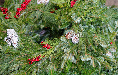 pine cone and pine tree leaves for Christmas decoration