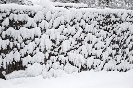Snow on the wood fence after blizzard Zdjęcie Seryjne