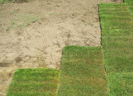 installing the green turf on the lawn Stock Photo