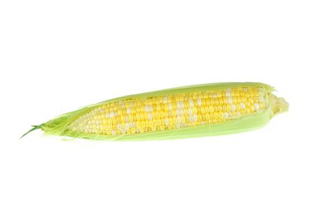close up on fresh corn cob with husk isolated on white background