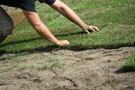 close up on worker installing turf on the lawn Stock Photo