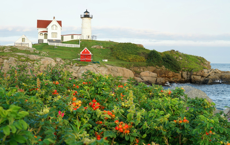 nubble lighthouse with rocks, sea and colorful plant