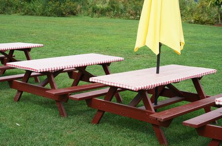 picnic tables outdoor on the green meadow