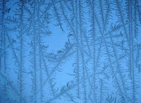 frost crystal on the window in winter