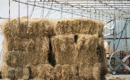 bale of hay stacking inside shed of farm