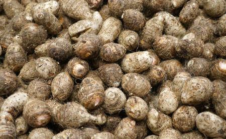 fresh raw taro in pile as food background