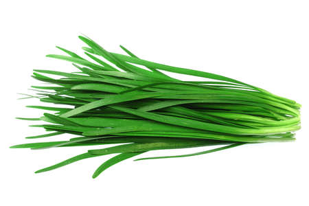 close up fresh chives isolated on white background