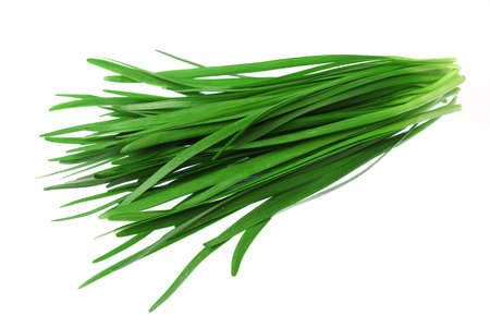 close up fresh chives isolated on white background Banque d'images