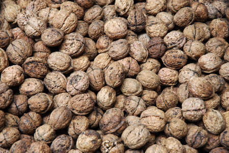 walnut in pile during harvest season as food background 免版税图像 - 159418534