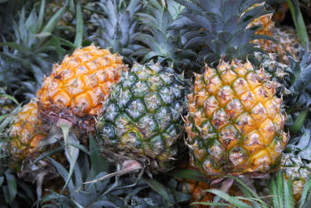close up on pineapple in pile 免版税图像
