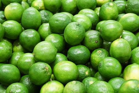 Fresh green lime pile in harvest season 免版税图像 - 159501819
