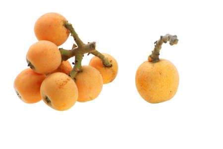 a bunch of loquat isolated on white background
