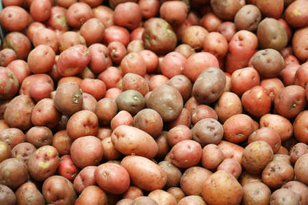 Fresh red potatoes in the supermarket for sale