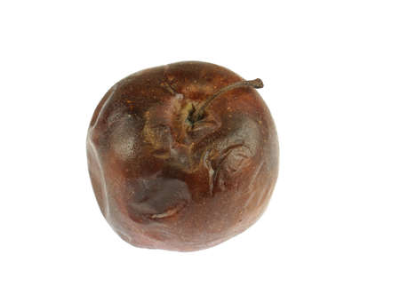 dry and rotten apple isolated on white background 免版税图像