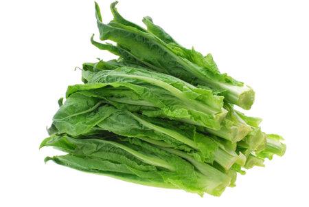 close up on fresh lettuce isolated on white background 免版税图像