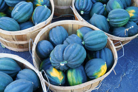close up on pumpkins in the basket container 免版税图像