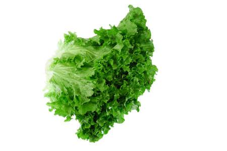 close up on fresh green lettuce texture 免版税图像