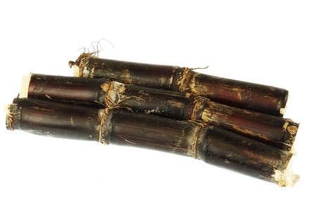 close up on sugar cane isolated on white background