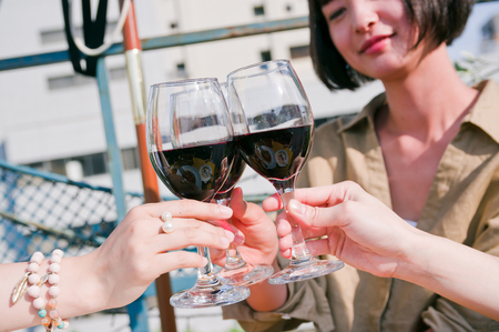 Women having a toast with wine at girls party
