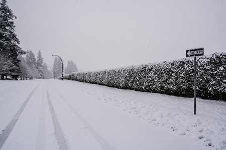 Snowy one way road with long green hedge in snow on the side