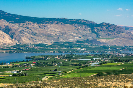 Okanagan valley panoramic view with residential area and orchard farm fields. Residential houses in Okanagan valley built on Osoyoos lake shore with mountains on the background