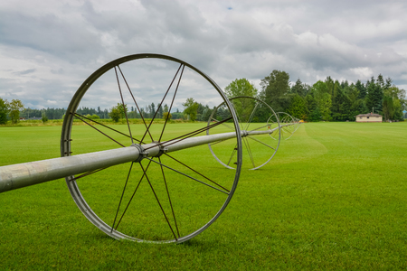 English lawn growing on a farm. Green lawn with irrigation system over the field on cloudy summer day Stockfoto