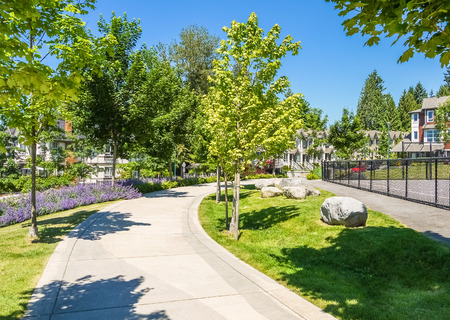 Paved walkway with maple trees in park area of residential community