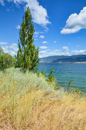 Beautiful view of Okanagan lake on summer day 版權商用圖片