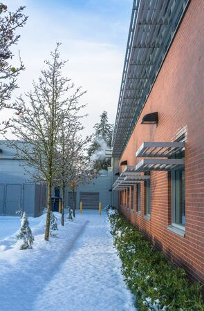 Snowed pathway with trees and small hedge along brick wall of the building 版權商用圖片