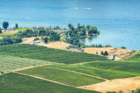 Landscape overview with farmers land at Okanagan lake on sunny summer day Stock fotó