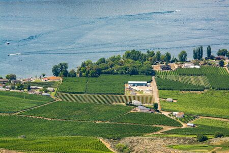 Landscape overview with farmers land at Okanagan lake on summer day Stock fotó