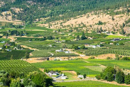 Farms land landscape on summer day in Okanagan valley
