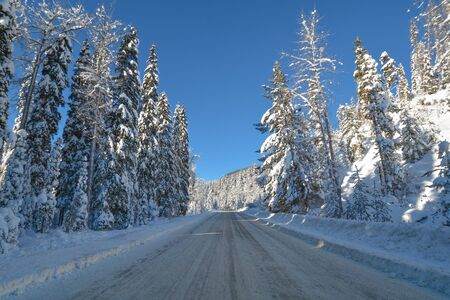 Snowed road through the winter forest in Manning Park, BC
