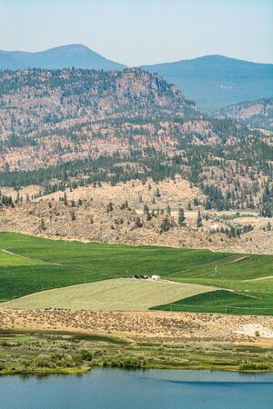 Okanagan valley view with farm land area and orchard on the lake shore 免版税图像