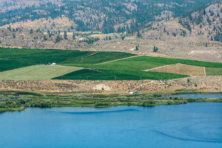 Okanagan valley scenery view with residential area and orchard farm fields 免版税图像