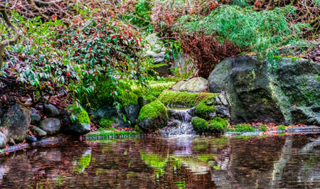 Macro background of small park laguna with a pond and stones