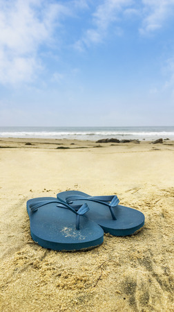 Flip flops overlooking beach shoreline