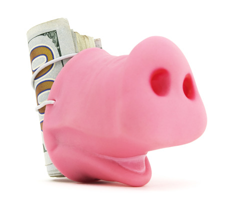 strapped: Pig Snout With Cash